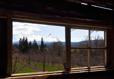 Panorama of orchard, various trees, mountain with snow, cloudy sky, open through the window frame of an old house  photo