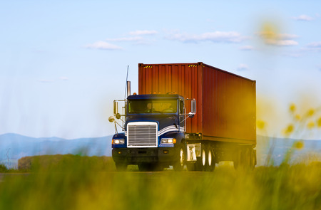 Big blue truck carrying brown corrugated metal container, the view across the blurred yellow flowers and grass on a background of blue sky and mountains