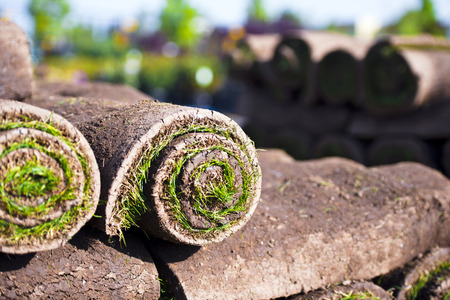 Landing of roll turf green grass stockpiled on one another for use as a material for the work on the home landscape or lawn. Rolls stockpiled against a blurred background of green spaces