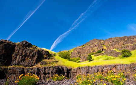 exceptional: Landscape of bright orange flowers in the foreground against a background of rock cliffs with shrubs and grass on a background of blue sky saturated with traces of aircraft flown Stock Photo