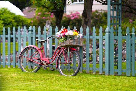 cicla: Elegante vieja bicicleta roja con estilo con una cesta de flores en una cesta para el equipaje en la parte delantera de pie rueda de bicicleta en una valla de madera pintada con un portillo y un jardín delantero con flores y árboles en el fondo Foto de archivo