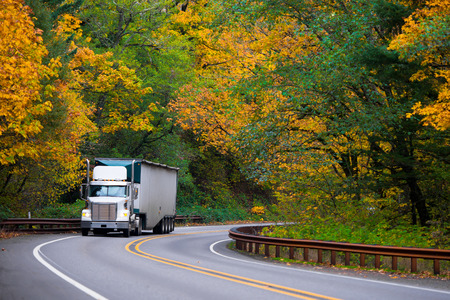 Big white truck with a classic bonnet bulk trailer with a spoiler on the cab to reduce air resistance when cornering winding road, metal fencing and a dividing strip on yellow background colorful autumn trees.