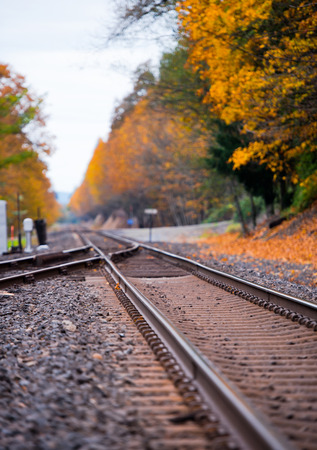 proximal: Railroad tracks converging into one of the two metal rails, wooden sleepers and gravel, leaving the horizon surrounded by spectacular yellowed beautiful autumn trees. Landscape, which is to reflect on the meaning of life with the sharpness at the proximal