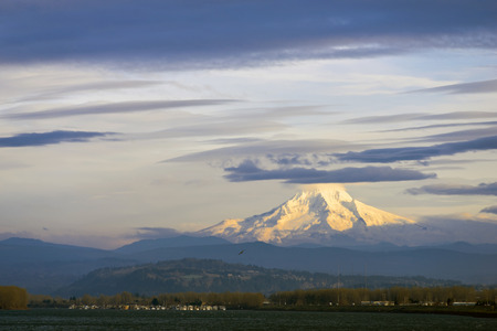 a wonderful world: Scenic dramatic landscape with snowy mountain top of which thin dark clouds closed. At the foot of hills covered with trees located in the valley of the river Columbia. All this creates a wonderful world of Columbia Gorge Area