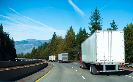 Colon semi trucks with white trailers on a winding highway of national importance, surrounded by evergreen trees carries loads for industrial consumers.