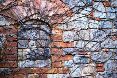 manmade: Dry vine waiting for spring warmth entwine the old stone wall with arched window, laid stone blocks of gray stone in the struggle for survival of nature over man-made objects. Stock Photo