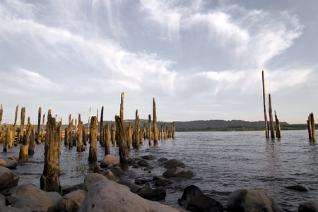 constitute: Wooden poles old pier destroyed by time and boulders on Columbia River sticking out of water  Stock Photo