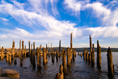 constitute: Remains of old pier sticking out of water