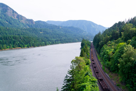 evergreen trees: The railway and moving freight train on it was laid along the scenic Columbia River shore is surrounded by greenery of the trees on the slopes of the steep rock formations. Evergreen trees and the waters of the river create a unique beauty of Columbia Gor