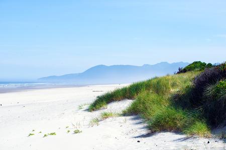arenas movedizas: Arbustos hierba verde brillante cubierta de arenas movedizas, causado por el viento y las olas en marea alta en la arena a orillas del Oc�ano Pac�fico hasta la cordillera escondido en una neblina azul en el horizonte.