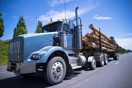 Blue workhorse powerful bonneted semi truck with a diesel particulate filter and a separate trailer transports huge long logs from logging onto the sawmill on smooth multi-band highway.