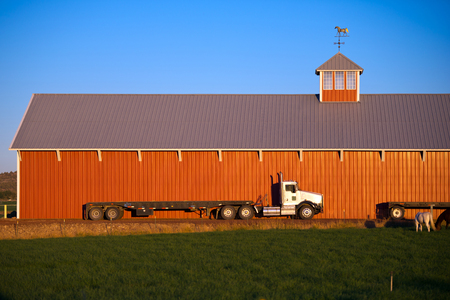 weather vane: White large work semi truck big rig as a workhorse in this stable among the horses under the wall is a large stables with red walls and a glass tower with a weather vane on the roof.