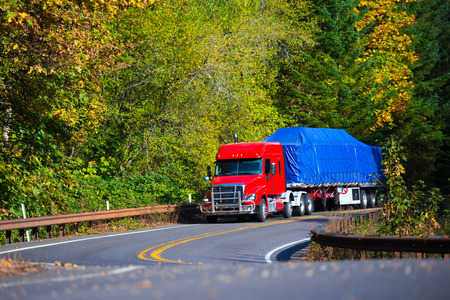 Powerful heavy huge bright red modern professional long haul semi truck with a protective grille, low roof and flat bed trailer transporting commercial cargo covered blue tharp cornering scenic highway in the forest the tree starts to fall. Zdjęcie Seryjne