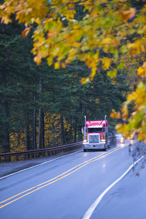 Classic red semi truck on a beautiful autumn wet from the rain straight road with the reflection of headlights on the highway road with yellow leaves transporting cargo on long distances in the open flat bed trailer.