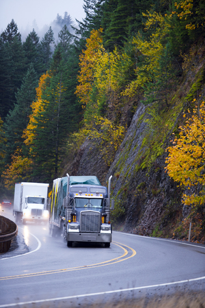 A column of several modern semi trucks of different brands and models with different designs of trailers for various cargo moves in the rain through the picturesque autumn Highway in the mountains, already covered with yellowed and the remaining green tre
