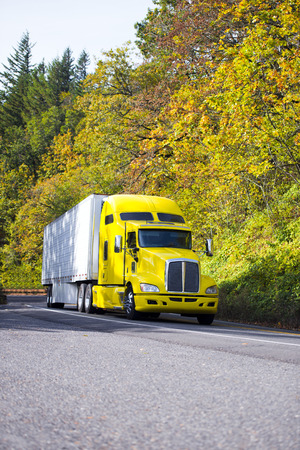 Bright yellow popular modern and comfortable semi truck with a refrigerator trailer for transportation of perishable goods for long haul by spectacular road climbs up the hill among autumnal trees.