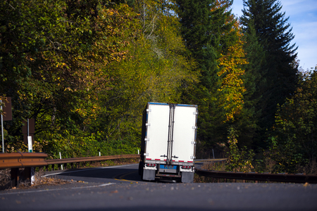 inclination: Landscape of winding road, passing the autumn forest with yellowed trees, with a metal safety fence and a contrasty to green and yellow background bright white semi truck carrying a semi trailer and an inclination on turn of the road.