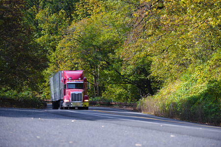 Professional red big rig semi truck with refrigerated trailer rides up the hill on the scenic highway among autumn yellow and green trees. Popular model of a modern classic truck in North America with extended bonnet.