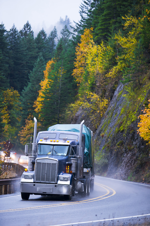 Powerful dark blue semi truck with high chrome tailpipes with a cargo on flat bed trailer coverings cargo with tharp moves along winding mountain highway with yellowed autumn trees on a hillside in a gray rain cloud of spray from the wheels of the semi tr