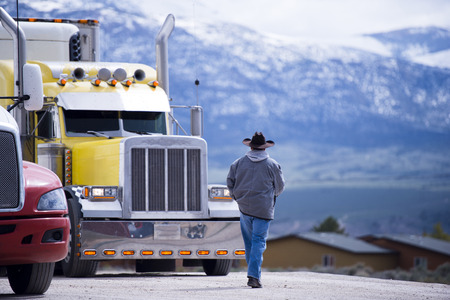 The truck driver goes to his bright yellow attractive impressive customized big rig semi truck parked in the parking lot on a picturesque backdrop of snow-capped mountain ranges.