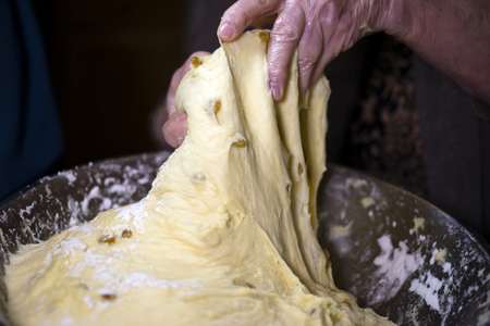 Skilful hands experienced hostess kneaded the soft form viscous pastry with raisins in pastries, pulling the dough and divide it into portions.