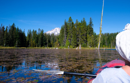 trillium lake: A great vacation in a canoe on Trillium Lake, effectively overgrown with wild lilies, and water which runs the powerful reflection of Mount Hood with an almost eternal snows melted and the vast green forest, filling the Northwest unique aroma of freshness