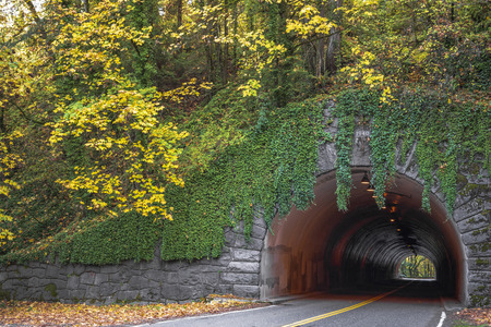 Spherical tunnel with go through road carved through the rock and revetted with granite and ivy-covered with autumn trees with yellow leaves on a hill