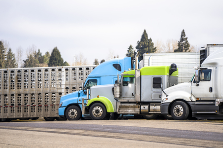 Big rigs commercial cargo haulers Semi Trucks with different semi trailers of various brands and models stand on truck stop parking for truck drivers rest and continue delivery routes as scheduled Stock Photo