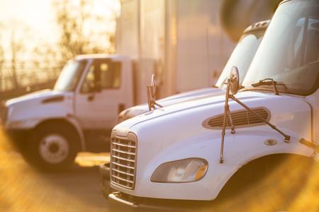 Plataformas de servicio medio Camiones con remolques de caja en las puertas del almacén para cargar carga comercial para las próximas entregas locales inundadas de luz solar