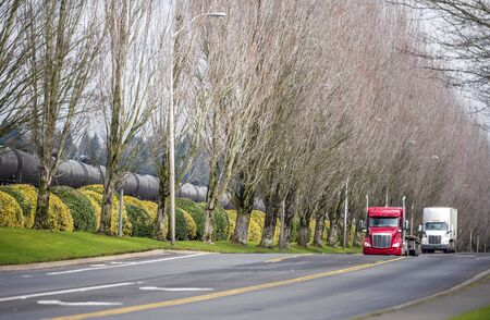 Convoy of Big rig classic bonnet powerful semi trucks transporting commercial cargo in semi trailers running on the straight divided road with trees on the side Banque d'images - 128422679