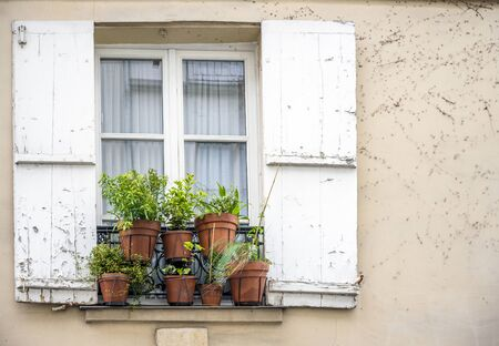 Clay pots with flowers and plants are exposed outside a curtained window with wooden shutters on fixed metal rims of an impromptu balcony on the facade of a plastered house Imagens