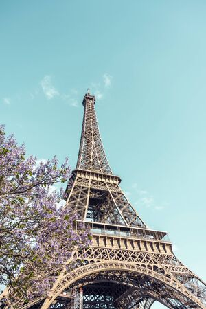 The unique iconic famous Eiffel Tower with spring flowering tree, as a symbol and main landmark of Paris and the French inventive genius in the historical past, attracts thousands of tourists Zdjęcie Seryjne - 129626245