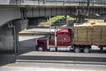 Dark red big rig classic semi Truck with vertical exhaust pipes transporting flat bed semi trailer carries pressed hay running on the highway under the bridge