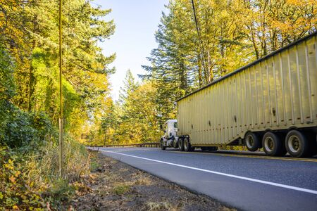 Big rig day cab white semi truck for local logistic freights transporting cargo in long covered corrugated bulk semi trailer running on the road going through the autumn forest with yellow trees