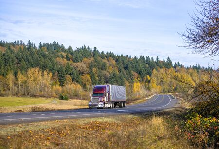 Dark red classic bonnet American big rig semi truck with vertical exhaust pipes transporting refrigerated corrugated semi trailer with refrigerator unit on the front wall driving on the autumn road