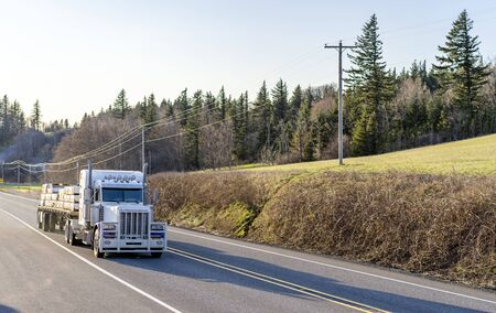 Industrial grade transportation Big rig white classic semi truck with powerful grille guard transporting lumber wood on flat bed semi trailer driving on the road with trees and hill on the side 写真素材