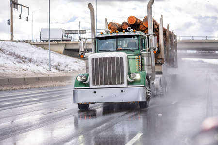 Industrial powerful big rig classic semi truck tractor transporting long wood tree logs on the special semi trailer running on the wet slippery highway road with rain dust from under the wheels 版權商用圖片