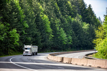 White classic big rig long haul industrial semi truck tractor transporting cargo in covered low profile bulk semi trailer running on curving highway road with green mountain forest in Columbia Gorge 版權商用圖片