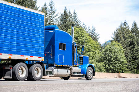 Blue big rig semi truck tractor with chrome accessories and roof spoiler transporting cargo in same color refrigerator semi trailer running on the green forest highway road in Columbia Gorge