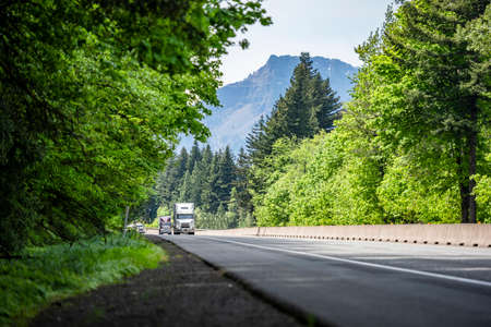 Two big rig industrial semi truck tractors transporting commercial cargo in different semi trailers running at same direction on highway road with green forest trees in Columbia Gorge