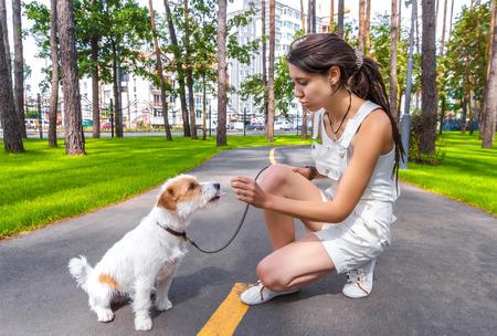 젊은 여자가 소유자가 그녀의 장난 꾸러기 개 이야기. 인간에게 혀를 보여주는 애완 동물.