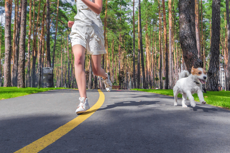 Dog and human running on track in summer park. Sport training with pet.