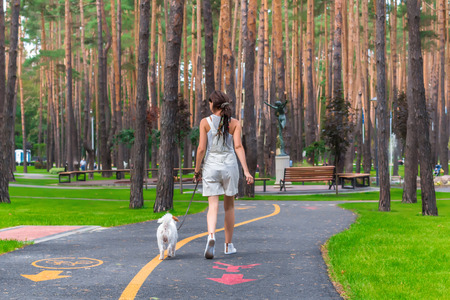 Woman walking with her dog in a park. View from the back