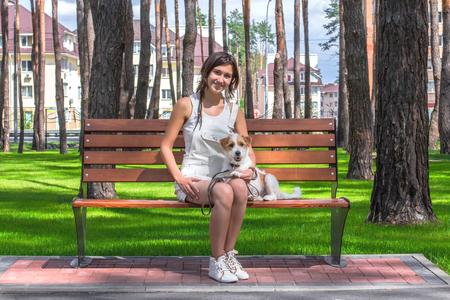 젊은 웃는 여자와 강아지는 여름 공원에서 벤치에 앉아 스톡 콘텐츠