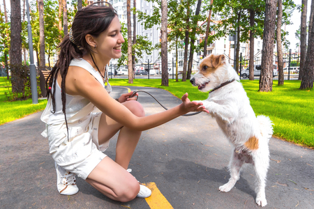 White dog and woman training in a park outdoors