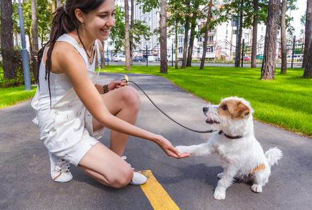 젊은 여자와 개는 여름 공원 골목에서 떨고 손. 인간과 애완 동물 최고의 친구 개념