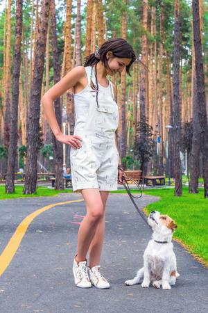 여름 공원에서 산책하는 동안 서로 찾고 개와 젊은 여자 소유자