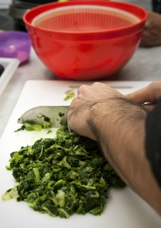 Cutting the escarole in a kitchen for a good vegetarian recipe