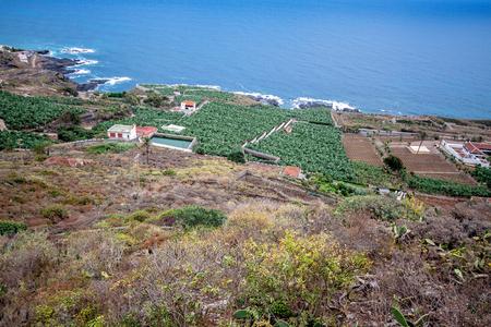 Tenerife Island - Canary Island