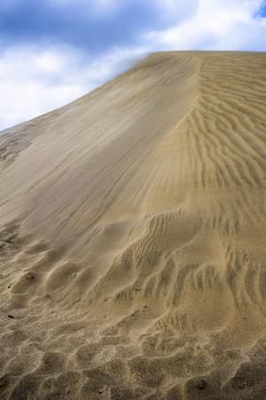 The desert before the ocean